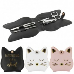 Set manucure chaton
