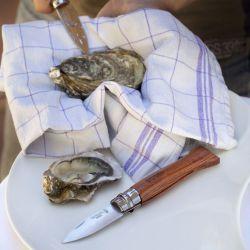 Couteau ouvre huîtres