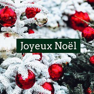 // JOYEUX NOËL // 🎁🎄 ⠀ Je pense à tous ces petits cadeaux de Sylvette emballés avec amour sous vos sapins ❤️ ⠀ ⠀ Je pense à vos rires et vos larmes d'emotion en ouvrant les cadeaux personnalisés de Sylvette ❤️ ⠀ Je pense à toutes les petites plumes rouges, roses, noires et bleues sur les cadeaux de Sylvette qui se sont envolées dans vos maisons le lendemain de Noël ❤️⠀ ⠀ Je pense à ces moments de partage, de joie, de douceur, d'amour en famille que j'ai vécu avec vous à travers les petits cadeaux de Sylvette❤️ ⠀ Je pense aussi à vous dire MERCI de nous avoir fait confiance, d'être venus nombreuses et nombreux jusqu'au dernier jour pour acheter le petit cadeau de Sylvette qui manquait parce que TATA JUJU n'était pas prévue !!!!⠀ ⠀ et bien sûr je ne pense qu'à une seule chose maintenant c'est de vous souhaiter à toutes et à tous un⠀ ⠀ JOYEUX NOËL🎁 ⠀ .⠀ .⠀ #sylvetteengoguette #clamart #conceptstore #cadeaux #cadeaunoel #ideecadeaunoel #ideecadeaux #joyeuxnoel #christmasshopping #christmastime #christmaspresent #seeyouagain #lovemyjob💕