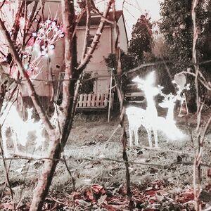 // DERNIERS INSTANTS DE NOËL// les lumières de mon voisin qui s'est épris des lumières de Noël. Quel délice quand je rentre chez moi tous les soirs. Je retombe en enfance... merci Christian ⠀ .⠀ .⠀ .⠀ .⠀ #lumieredenoel #noel2019 #deconoel #christmaslight #monenfance #clamart