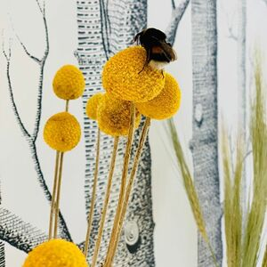 // TOUT LE MONDE A LA MAISON // même les insectes 🦟 quelle jolie image de ce bourdon qui cherche à butiner les fleurs sèches de la maison... . . . . #confinement #resterchezvous #alamaison #lavieestbelle #mylife